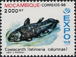 Postage stamps and postal history of Mozambique - 1998 Mozambique stamp featuring an image of a coelacanth