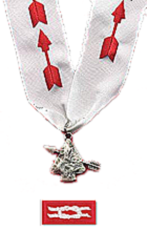 Order of the Arrow honors and awards - Image: Order of the Arrow Distinguished Service Award