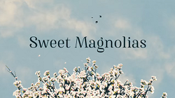 Sweet Magnolias Title Card.png