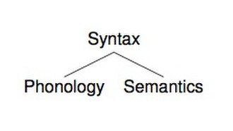 Focus (linguistics) - Fig. 1 The Y-Model of Syntax, Semantics and Phonology