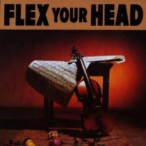 Flex Your Head - Image: VA Flex Your Head LP altcover