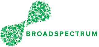 Broadspectrum Australian infrastructure maintenance services company