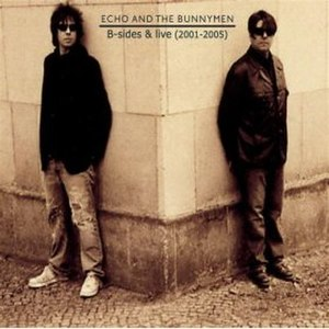 B-sides & Live (2001–2005) - Image: Bunnymen bsidesandlive