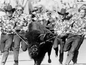 Ralphie the Buffalo - Ralphie I served 1966–78
