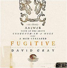 David gray fugitive.jpg