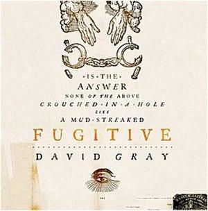 Fugitive (song) - Image: David gray fugitive