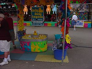 Carnival game - The Duck Pond Game