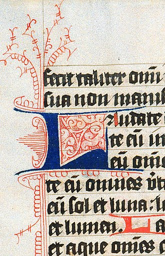 Manuscript culture - Flourished initial L