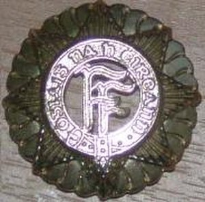 Irish Defence Forces cap badge - Staybrite version of the capbadge worn usually by Enlisted personnel in the Defence Forces.