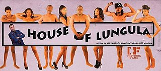 <i>House of Lungula</i> 2013 film