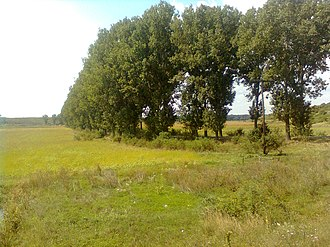 Giurgiu County - Landscape in the northern part of the county