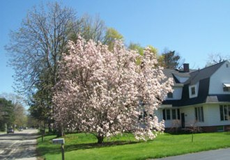 Irondequoit, New York - Image: Irondequoit Spring