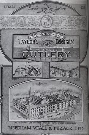 Taylor's Eye Witness Works - An advertisement for the Taylor's Eye Witness Works from the 1890s.