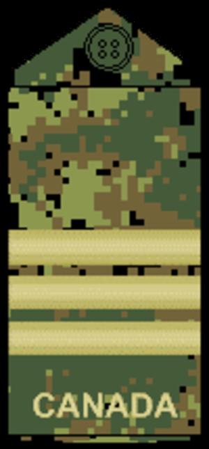Lieutenant-colonel (Canada) - Image: CADPAT temperate L Col