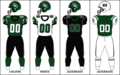 CIS UofS Jersey 2010.png