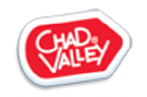 Chad Valley (toy brand) - Chad Valley current logo