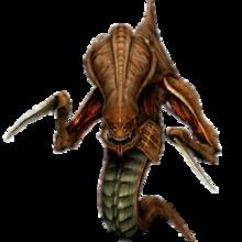 Races of StarCraft - Wikipedia