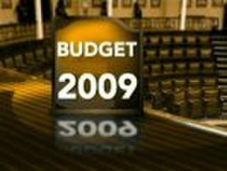 Fallout of the 2009 Irish government budget - Image: Irish government BUDGET 2009