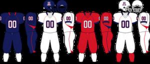2009 Arizona Wildcats football team - Image: Pac 10 Uniform UA 2009