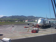 Green scenery at Los Rodeos Airport