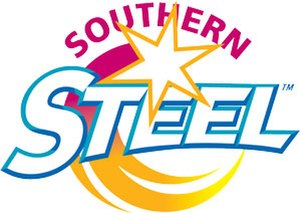 Southern Steel - Southern Steel logo during the ANZ Championship (2008–16)