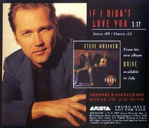 If I Didn't Love You (Steve Wariner song) - Image: Steve Wariner If I Didnt Love You single