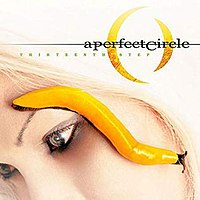 200px-A_Perfect_Circle-Thirteenth_Step.jpg