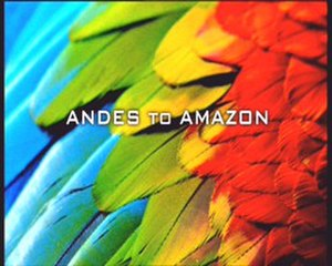 Andes to Amazon - Series title card