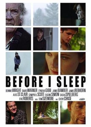 Before I Sleep (film) - Promotional poster