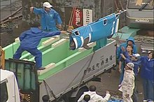 A dolphin in a sling being lowered by staff into one of two dolphin tubs on back of a truck