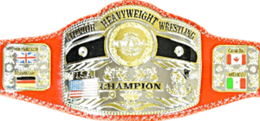 NWA World Junior Heavyweight Championship belt 2017.png