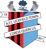 A.F.C. Uckfield logo.png