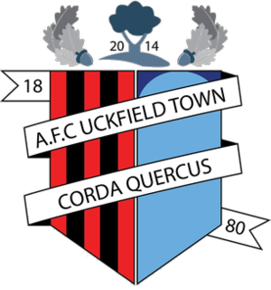 A.F.C. Uckfield Town - Image: A.F.C. Uckfield logo