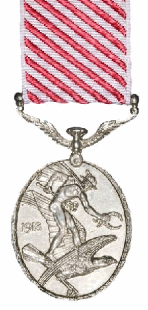 Air Force Medal - Reverse of medal