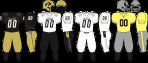 2009 Colorado Buffaloes football team - Image: Big 12 Uniform CU 2009