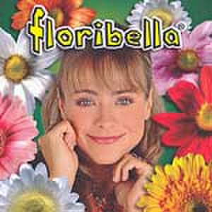 Floribella - Floribella, as portrayed in the Brazilian version by Juliana Silveira