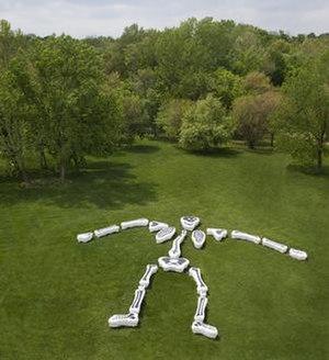 Funky Bones - Image: Funky Bones