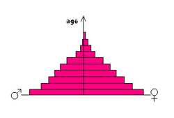 This distribution is named for the pyramidal shape of its graph.