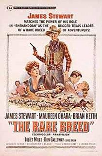 <i>The Rare Breed</i> 1966 film by Andrew V. McLaglen