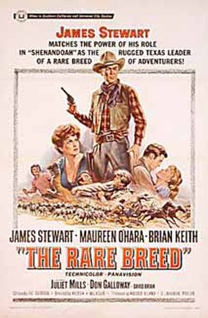 The Rare Breed - film poster by Reynold Brown