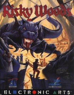 <i>Risky Woods</i> 1992 video game