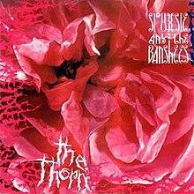 Siouxsie and the banshees peekaboo pmv - 4 3