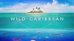 Wild Caribbean - Series title card from UK broadcast
