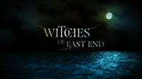 Picture of a TV show: Witches Of East End