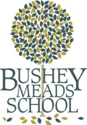 Bushey Meads School - Image: Bushey Meads School