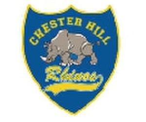 Chester Hill Rhinos - Image: Chesterhillrhinos