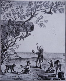 Illustration of the legend of monkeys harvesting tea.