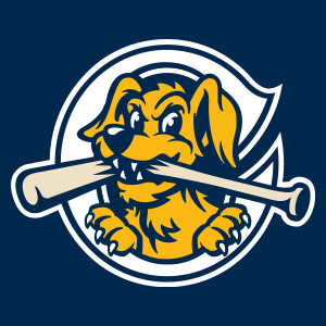 Charleston RiverDogs - Image: River Dogs cap