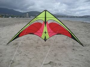 Commercially made dual line sport kite on display ready for launch