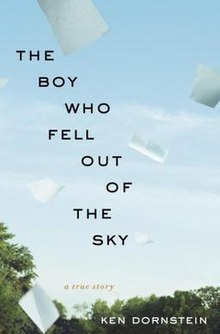 The boy who fell out of the sky hardcover edition.jpg